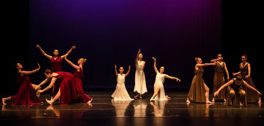 The Young Company photo 1